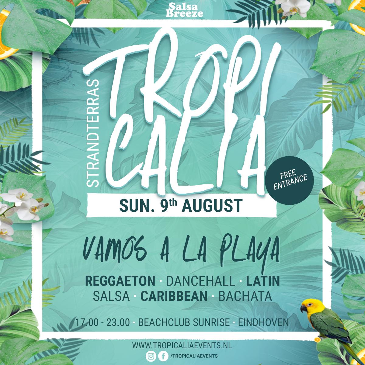 Tropicalia Strandterras 09.08.20 - Beachclub Sunrise (Eindhoven)